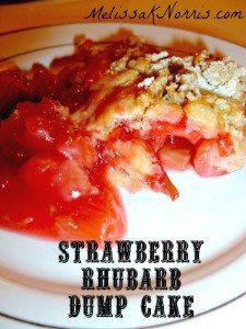 Strawberry Rhubarb Dump Cake www.melissaknorris.com