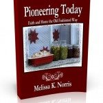 Pioneering Today by Melissa K. Norris