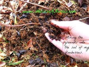 Mixing Coffee Grounds into Soil @MelissaKNorris