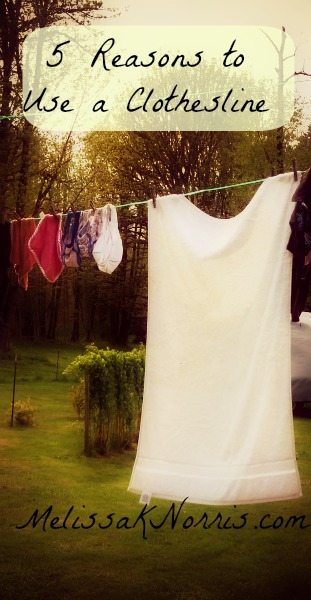 5 Reasons to Use a Clothesline @MelissaKNorris #PioneeringToday