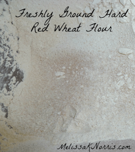 Freshly ground hard wheat flour www.melissaknorris.com