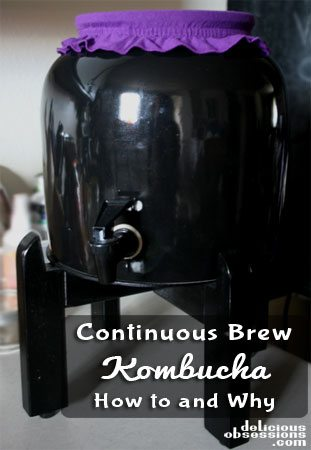 Continuous Brew Kombucha from Jessica of Delicious Obsessions