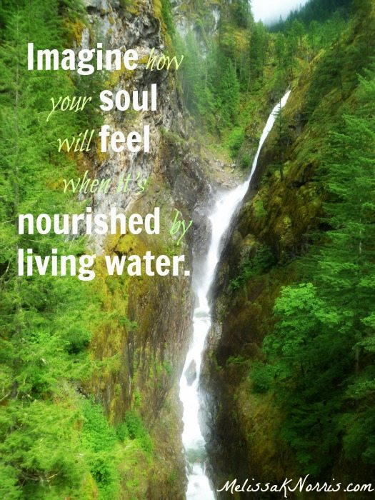 Discover the living water for yourself. www.melissaknorris.com
