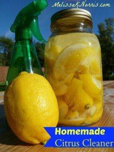 Homemade Citrus Cleaner www.MelissaKNorris.com