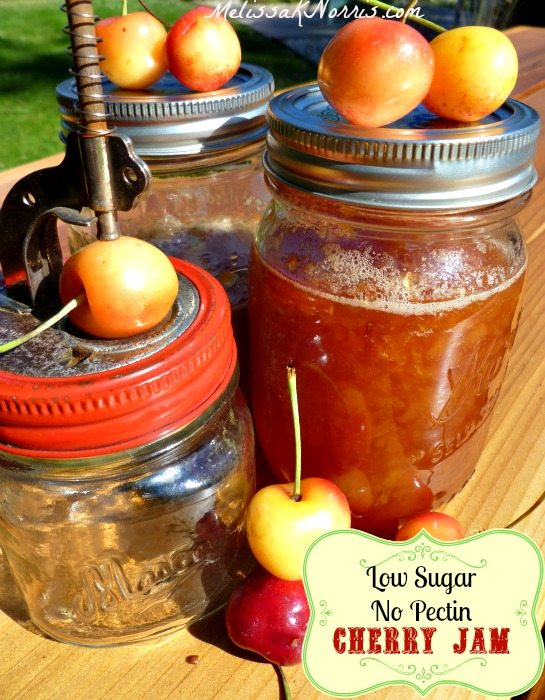 Want an old-fashioned cherry jam recipe without buckets of sugar and no store bought pectin? Grab this recipe now on how to can low sugar cherry jam like the pioneers did