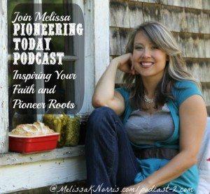 Pioneering Today Podcast www.melissaknorris.com
