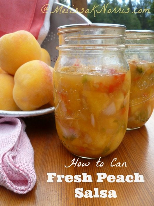 How to can fresh peach salsa www.melissaknorris.com Pioneering Today
