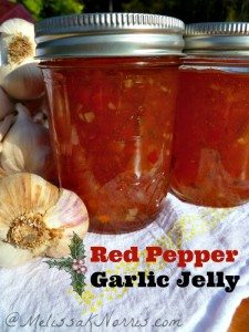 How to Make Red Pepper Garlic Jelly www.melissaknorris.com Pioneering Today