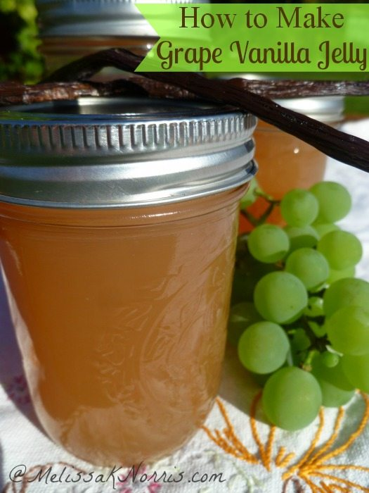 Easy low sugar grape vanilla jelly. Perfect way to put those grapes to use, plus, you get a bonus of vanilla sugar when you're done. Grab this now and get your grape jelly on.