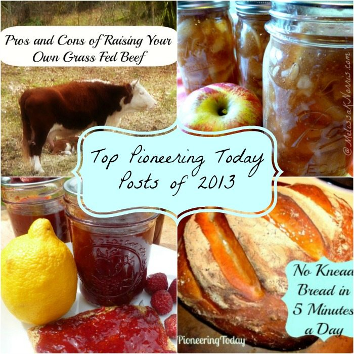 Top Pioneering Today Posts of 2013 @MelissaKNorris.com Top viewed recipes, canning, and homesteading posts for 2013
