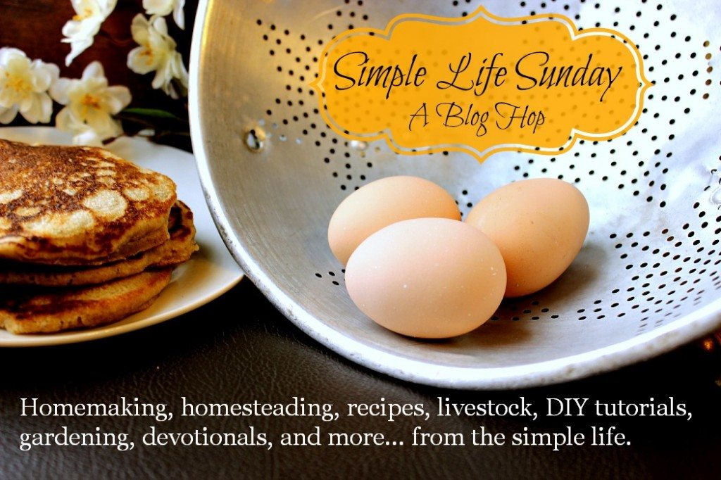 Simple Life Sundays A Blog Hop Tons of articles devoted to homemaking, homesteading, recipes, livestock, DIY, devotions, and all aspects of living the simple life www.MelissaKNorris.com