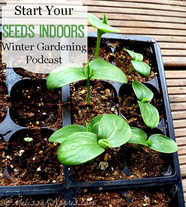 Start your seeds indoors. Which plants do best as starts, seed starting chart timeline, and hardening off tipshttps://melissaknorris.com/?p=3554 Everything you need to extend your growing season and get started now!