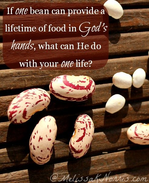 If God can take one bean and feed a nation, what can He do with your life if you let Him?