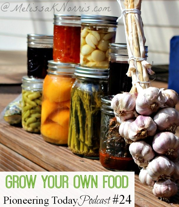 Grow your own food with these 10 easy steps essential to growing your own food year after year.