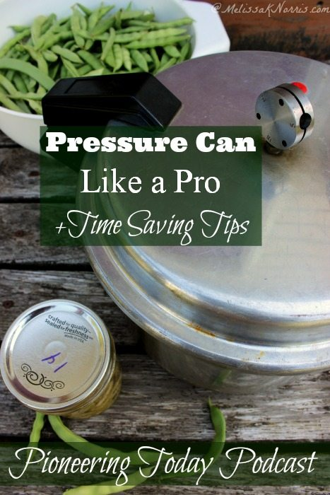 Learn how to pressure can like a pro with time saving tips! I need all the time saving tips I can get.