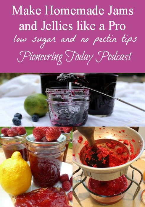 Podcast on making homemade jams and jellies like a pro. Love the tips for using low sugar or honey and how to avoid using store bough pectin. Love the test for making sure your jam will set once cooled. And knowing which berries to add acid too for shelf stable, priceless!