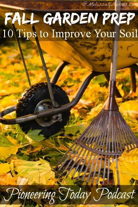 Podcast 38 Fall Gardening Prep 10 Tips to Improve Your Soil