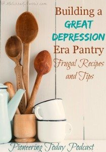 During the Great Depression, people learned how to get by on very little. Learn how to create a frugal pantry like they did during the Great Depression. I love the story of her father growing up during the Great Depression and how it still forms how he does things today. We could all stand to learn those lessons. The recipes sound wonderful and very frugal. If you're trying to create a frugal and healthy pantry and kitchen, you need to read this now!