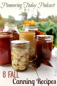 6 Fall canning recipes. Perfect for putting up the fall harvest. Now is the time to get the best deals on the produce so if you're trying to lower your food cost, read this to learn how to preserve these foods at home while the costs are low.