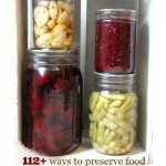 """Image contains a quart Mason Jar filled with beets, with a pint Mason Jar filled with potatoes stacked on top. Sitting next to them is a pint Mason Jar filled with green beans, and stacked on top is a pint jar of raspberry jam. Text overlay says, """"112+ Ways to Preserve Your Food - The Ultimate Resource Guide""""."""