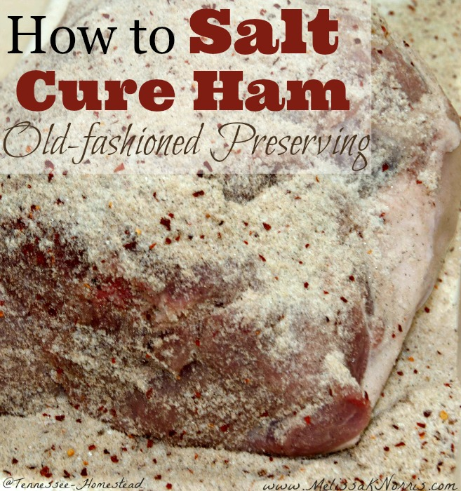 A ham roast in a salt cure.