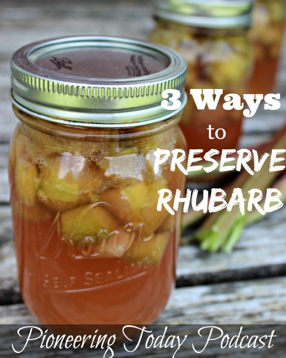 Want to have rhubarb all year long? Learn how to save money by preserving food when it's in season for year long use. Read now for 3 ways to preserve rhubarb and spring canning tips and recipes.