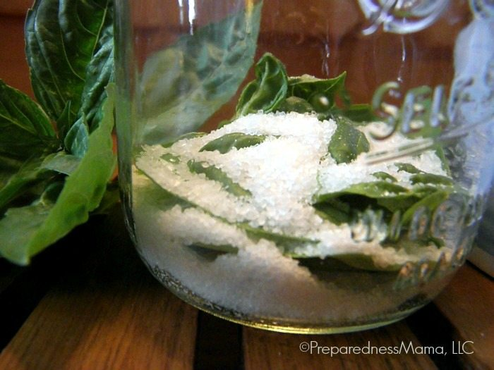 Preserve fresh herbs in layers of salt