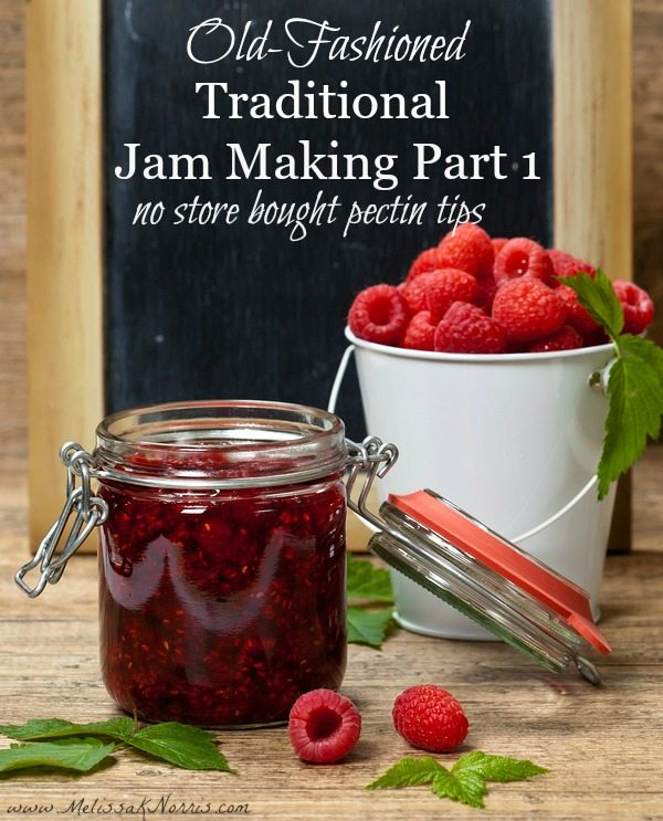 Want to learn how to make old-fashioned traditional jam without store bought pectin or loads of sugar? Read this now to begin putting up all your own jams and jellies to build up your food pantry and avoid store bought varieties with these much healthier options.