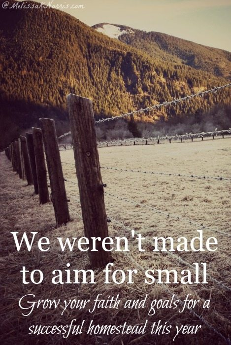 We weren't made to aim small. Learn how to have bigger faith and goals this year for a more successful homestead. I love the story of the homestead act in relation to faith!