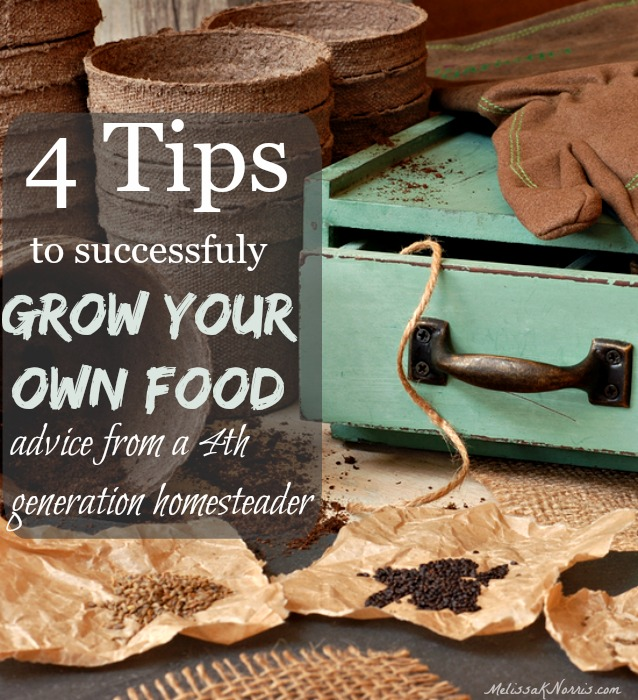 Ever wish you could go grocery shopping for free? Learn these great tips on how to get started growing your own food from a 4th generation homesteader! Who's doing this with me?