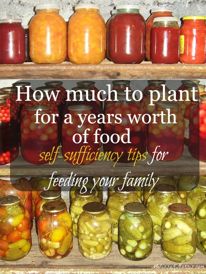 How much to plant per person for a year's worth of food of each plant per person