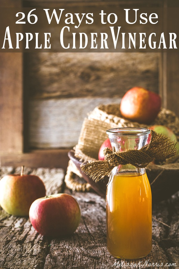 28 Ways to Use Apple Cider Vinegar – Melissa K  Norris