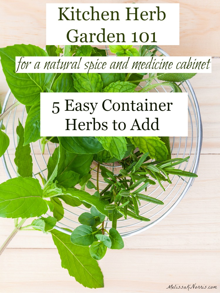 Wonderful Growing Herbs For The Kitchen 5 Herbs You Should Grow