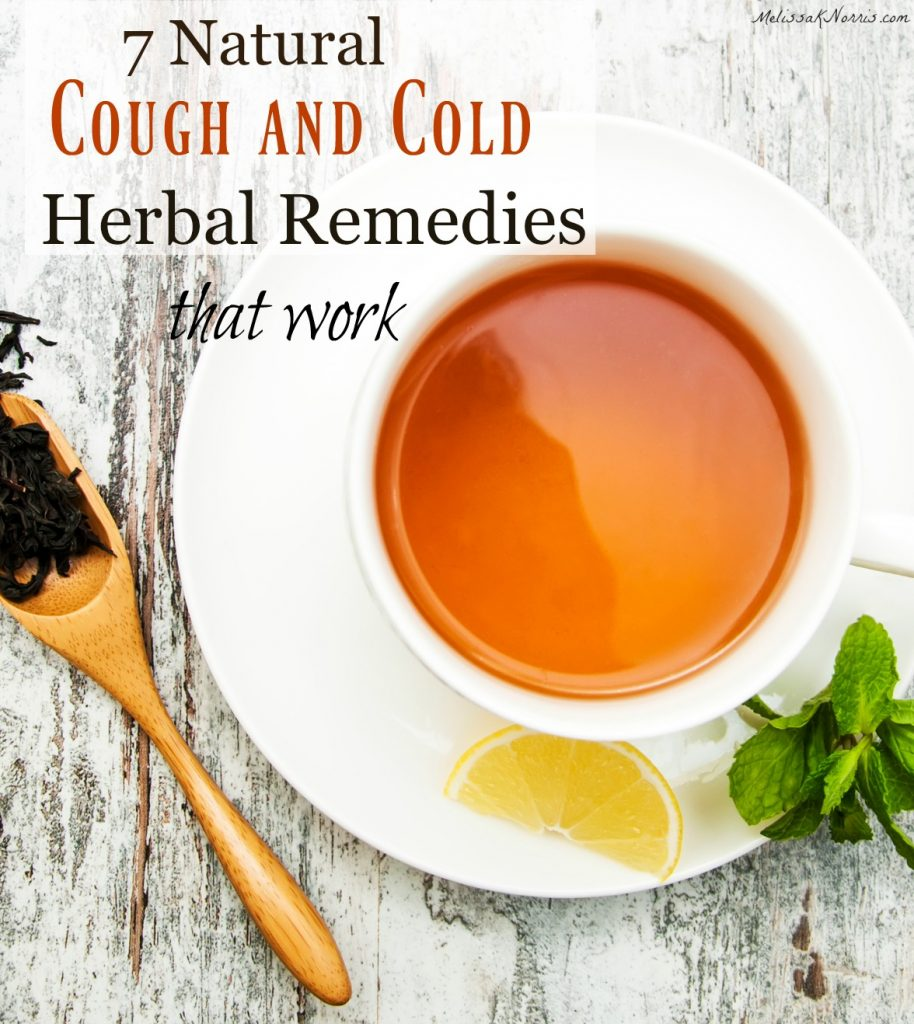 cough and cold herbal remedies
