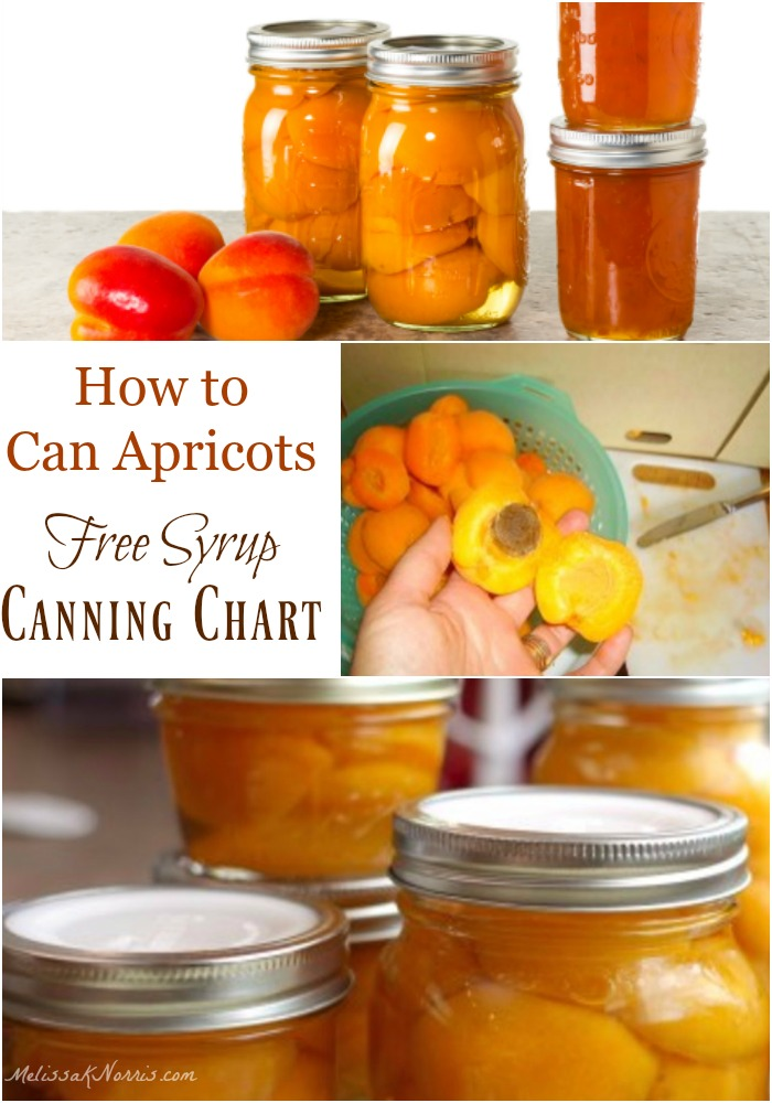how to can fresh apricots