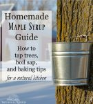 "Image of a bucket hanging from a tree with a snowy scene in the background. Text overlay says, ""Homemade Maple Syrup Guide: How to tap trees, boils sap, and baking tips for a natural kitchen""."