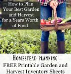 """Image of hands holding a basket full of various vegetables harvested. A prolific vegetable garden is in the background. Text overlay says, """"How to Plan Your Best Garden and Harvest for a Years Worth of Food""""."""