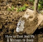 "Close up image of a spade shovel digging into freshly cultivated soil. Text overlay says, ""How to Test Soil Ph & Mistakes to Avoid""."