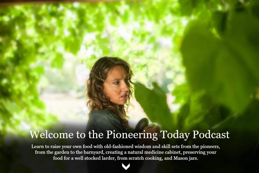 Pioneering Today Podcast the Modern Homesteading Podcast