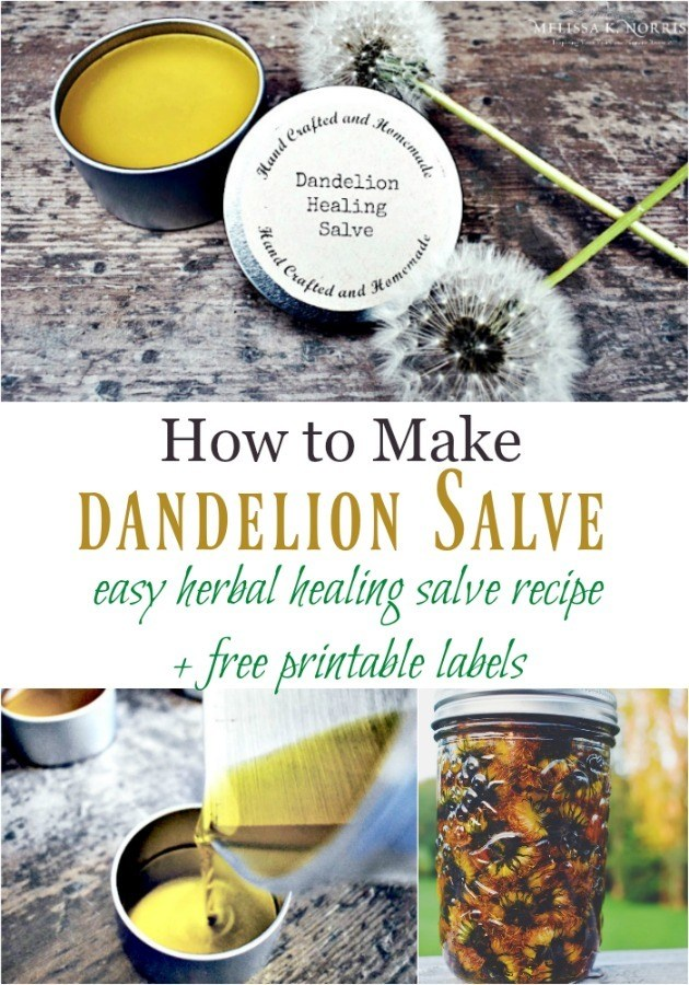 "Pinterest pin with multiple images of dandelions, salve and dandelion oil. Text overlay says, ""How to Make Dandelion Salve: easy herbal healing salve recipe + free printable labels"""