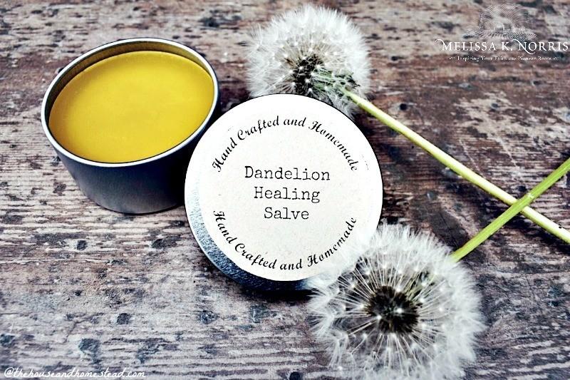 How to make dandelion salve