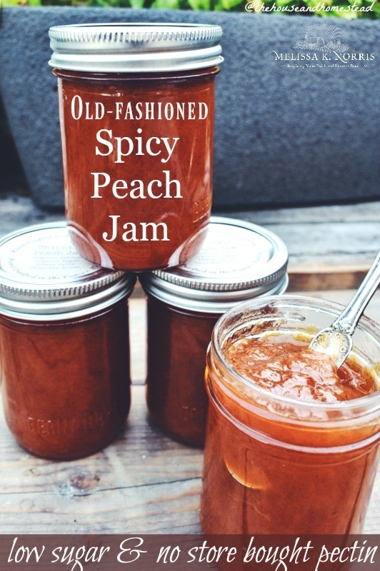 spicy peach jam recipe low sugar