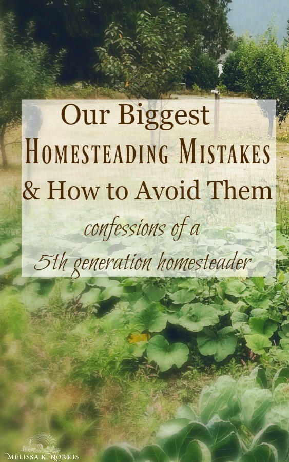 biggest homestead mistakes and how to avoid them when starting your homestead