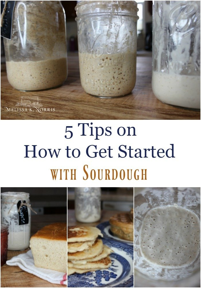 "Pinterest pin with two images. Top image is of three jars of bubbly sourdough starter. Bottom image is of bread and pancakes made with sourdough starter. Text overlay says, ""5 Tips on How to Get Started With Sourdough""."