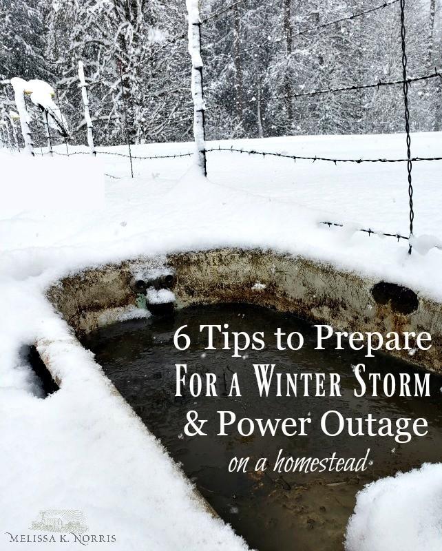 prepare for a snow storm