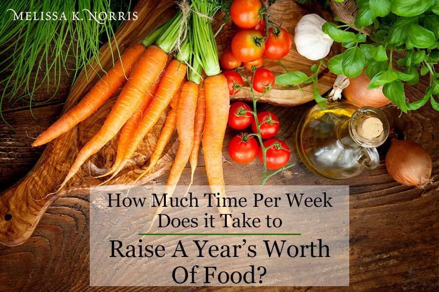 Raise a year's worth of food fresh vegetables on table