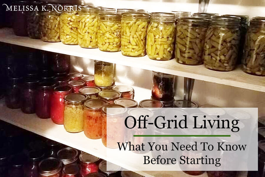 Off grid living pantry shelves lined with Mason jars filled with home canned food