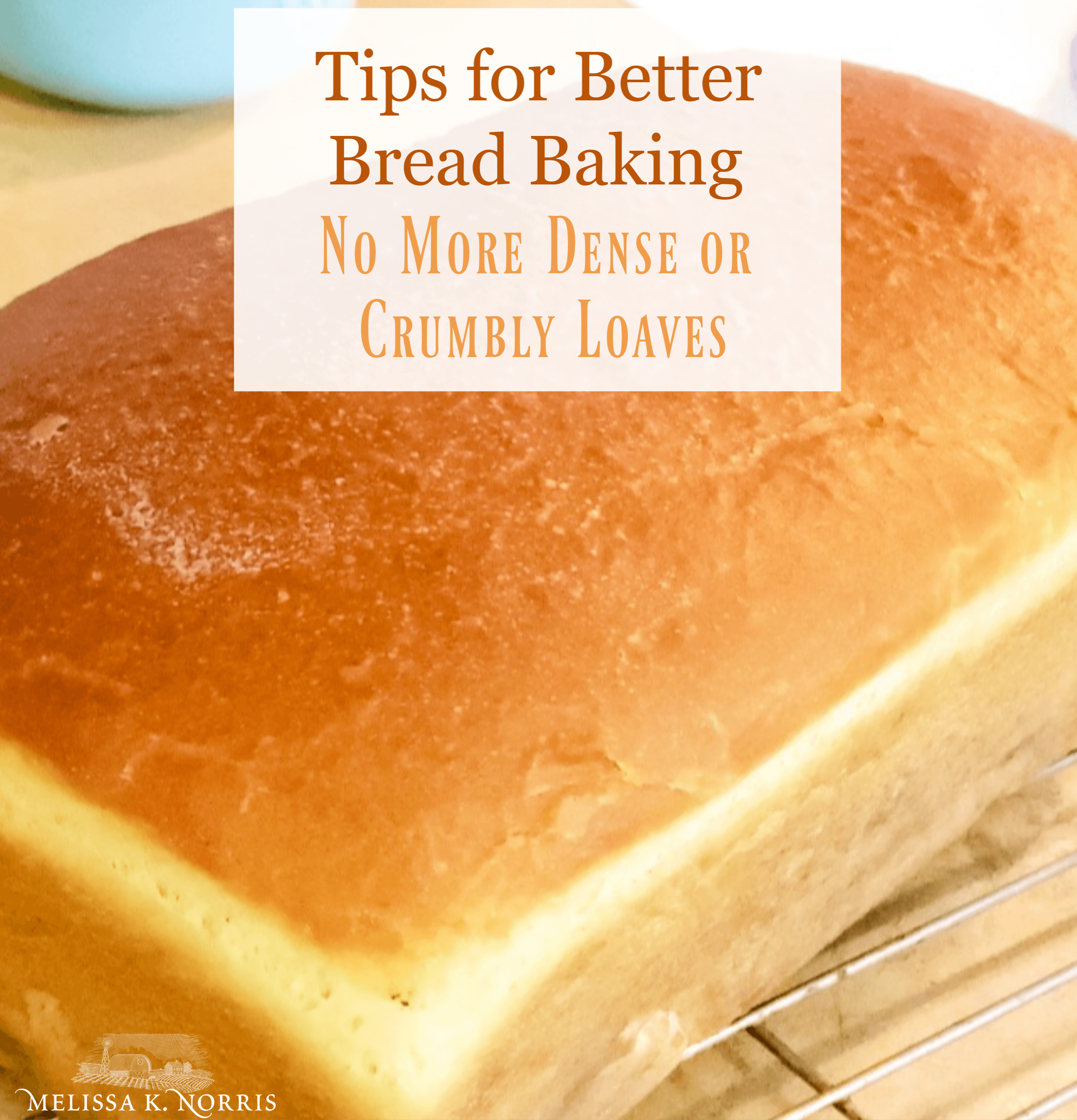 tips for better bread baking no more dense or crumbly loaves loaf of homemade sandwich bread