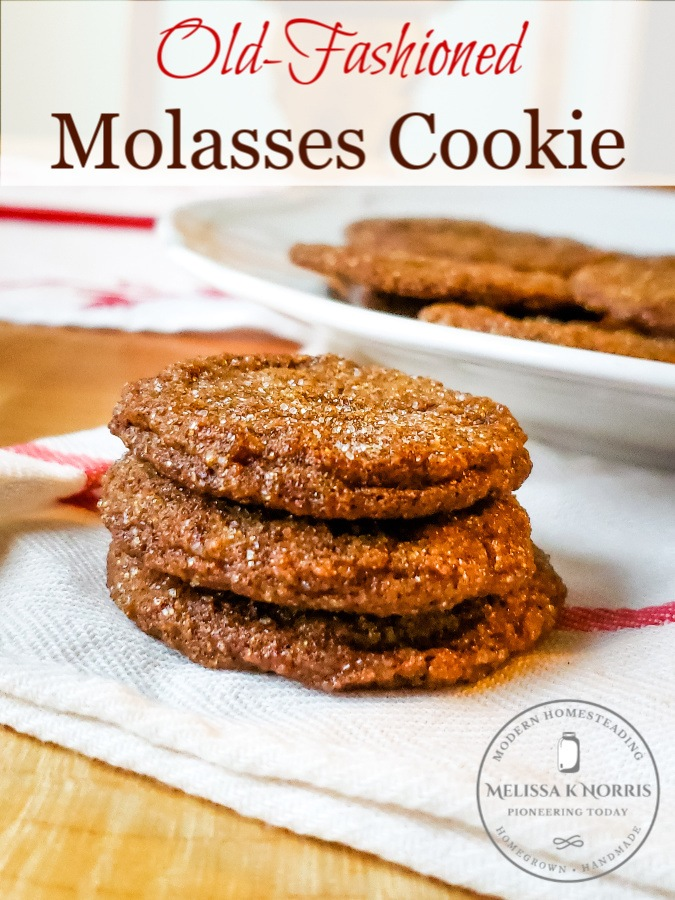 old-fashioned molasses cookie on wooden table