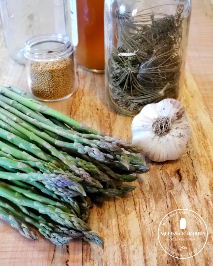 fresh asparagus with a clove of garlic and dill on table
